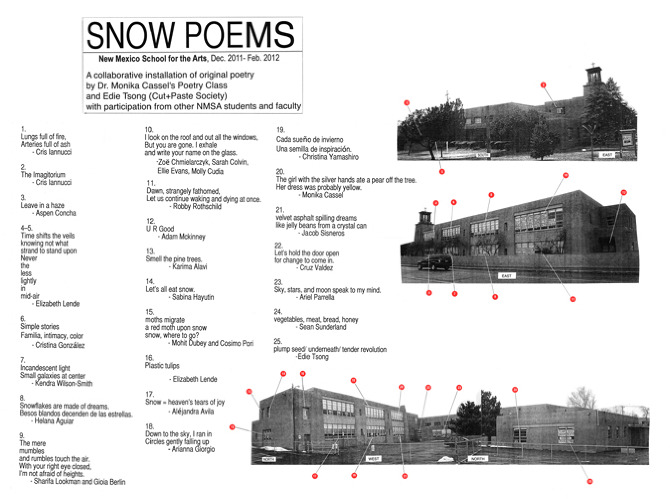 snowpoems nmsa